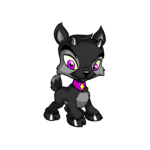 shadow ixi