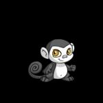 skunk mynci