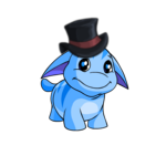 Dapper Poogle Hat