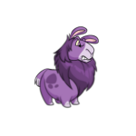 purple gnorbu