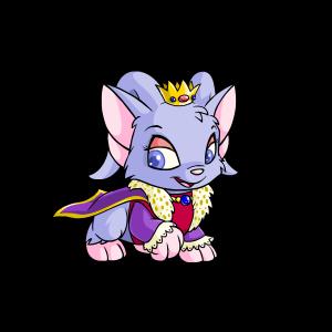 Female Royalboy Acara