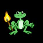 Nimmo Adventurer Torch