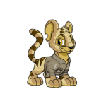 Kougra Adventurer Shirt