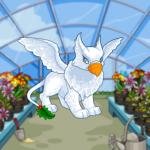 Greenhouse Background