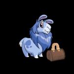 Classy Chic Gnorbu Bag
