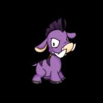 purple moehog