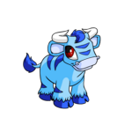 blue kau