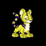 yellow kougra