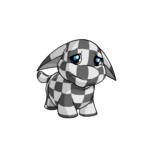 checkered poogle