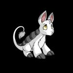 white bori