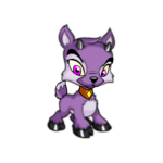 purple ixi