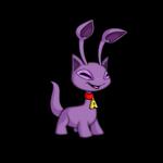 purple aisha