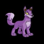 purple lupe