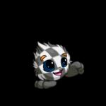 checkered jubjub