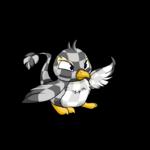 checkered pteri