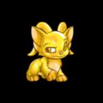 gold acara