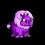 purple tonu