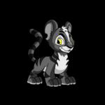 skunk kougra