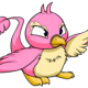 Pink Pteri