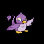 purple pteri