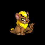 yellow xweetok