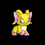 yellow acara
