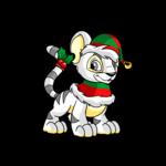 christmas kougra