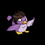 Suave Pteri Wig