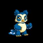 blue vandagyre