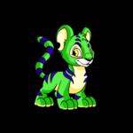 green kougra