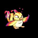 faerie pteri