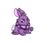 purple cybunny