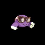 Super Hip Kiko Glasses