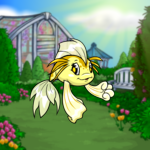 Spring Greenhouse Background