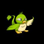 green pteri