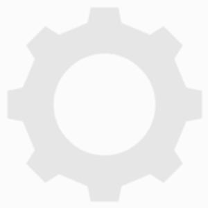 Unconverted Robot Pteri