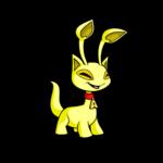yellow aisha