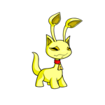 yellow aisha