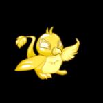 gold pteri