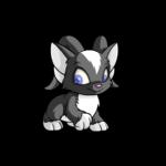 skunk acara