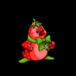 strawberry bruce