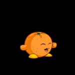 orange chia
