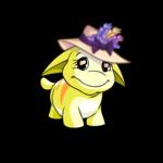 Delightful Poogle Hat