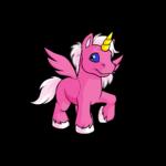 pink uni