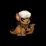 Dapper Xweetok Hat