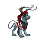 pirate gelert