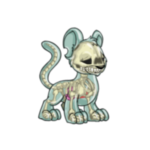 transparent kougra