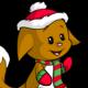 Christmas Kacheek