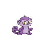 purple mynci