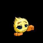 yellow jubjub